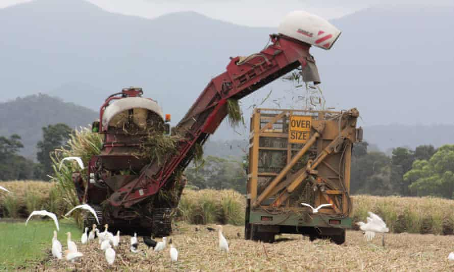 A trial converting sugarcane waste into renewable fuels could reduce greenhouse gas emissions.