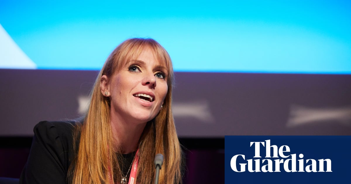 Ban anonymous accounts, Angela Rayner tells social media firms | Politics | The Guardian