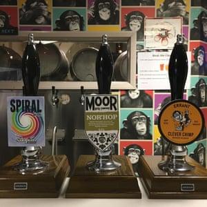 The Split Chimp, Newcastle