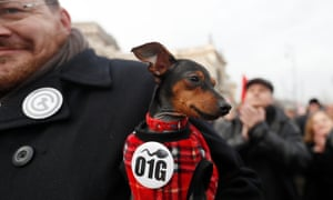A dog sports a badge with the O1G code at an anti-government protest in Budapest.