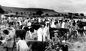 Agricultural Show at Danby, North Yorkshire, 1961.