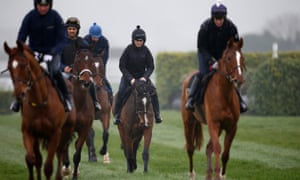 Vroum Vroum Mag stretches her legs with other Willie Mullins horses at Cheltenham