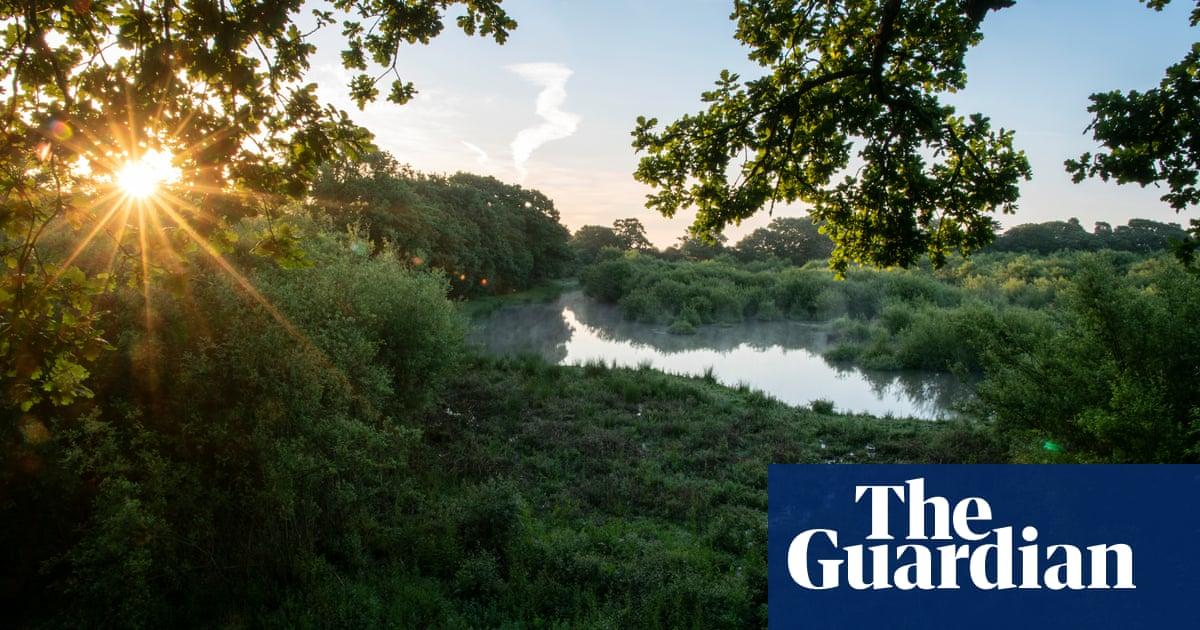 New biodiversity algorithm 'will blight range of natural habitats in England'