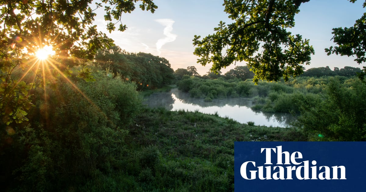 Rewilding 5% of England could create 20,000 rural jobs