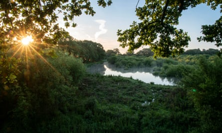 Knepp Wildland, West Sussex