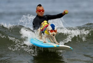 Derby the dog surfs while getting a push off by his owner Kentucky during the World Dog Surfing Championships at Linda Mar Beach, Pacifica, California, USA