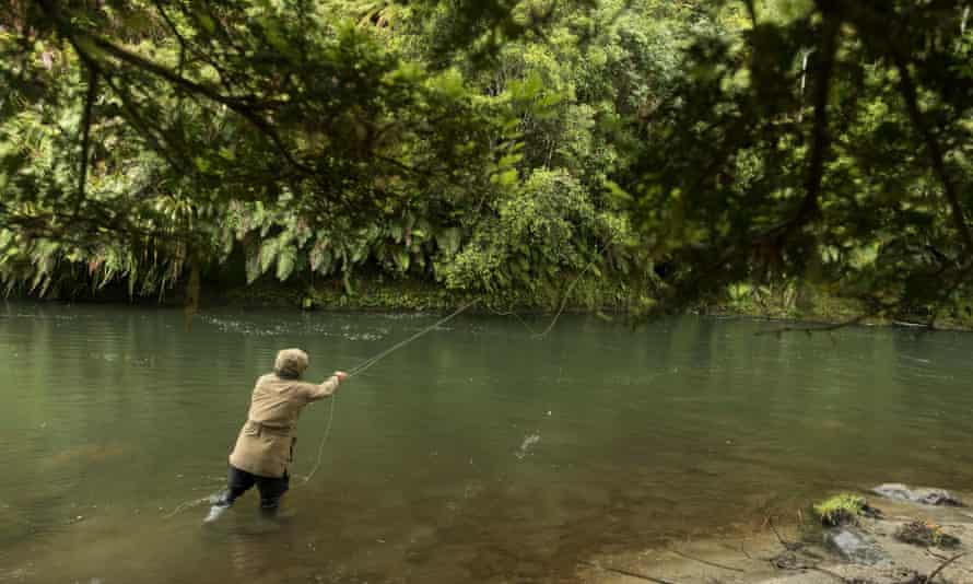 fishing on the upper Whanganui River