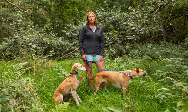 The millionaire rewilding the countryside, one farm at a time