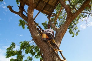 Treehouses allows villagers to sight elephants looking for cultivated fields from afar so they are better able to prepare