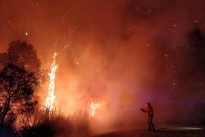 Firefighters battle a bushfire in Peregian Springs on the Sunshine Coast.
