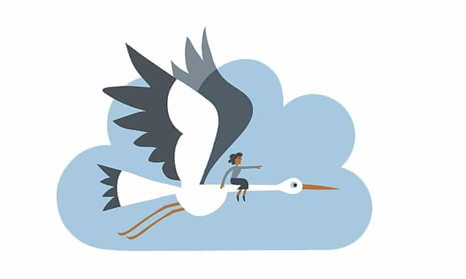 Lo Cole illustration of stork for what i'm really thinking