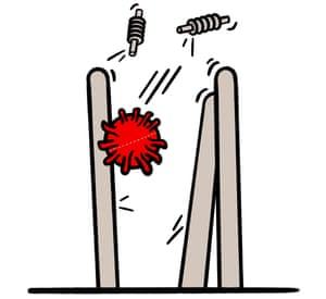 Illustration of cricket stumps with a ball shaped like a cornovarius