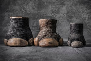 Confiscated rhino hooves of two adults (male and female) and one calf. The US Fish and Wildlife Service stores 1.3 million seized items at a warehouse in Colorado