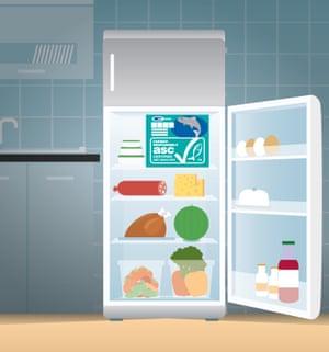 fridge-kitchen