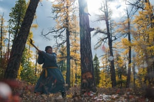 A member of the Tsaatan tribe chops down a tree in the forest