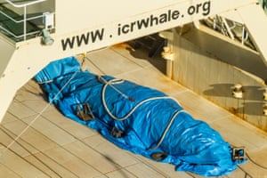 Sea Shepherd activists say this photo shows a dead minke whale covered by a tarpaulin on the deck of the Nisshin Maru whaler factory ship.
