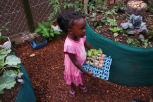 A child carries a tray of plants in eggshell pots