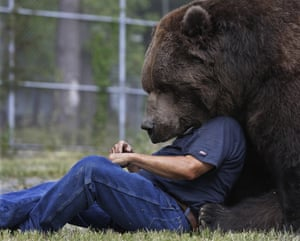 Jim Kowalczik plays with Jimbo, a 680kg Kodiak bear, at the Orphaned Wildlife Center in Otisville, NY.