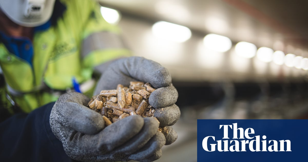 Drax to double wood pellet production with biomass firm purchase