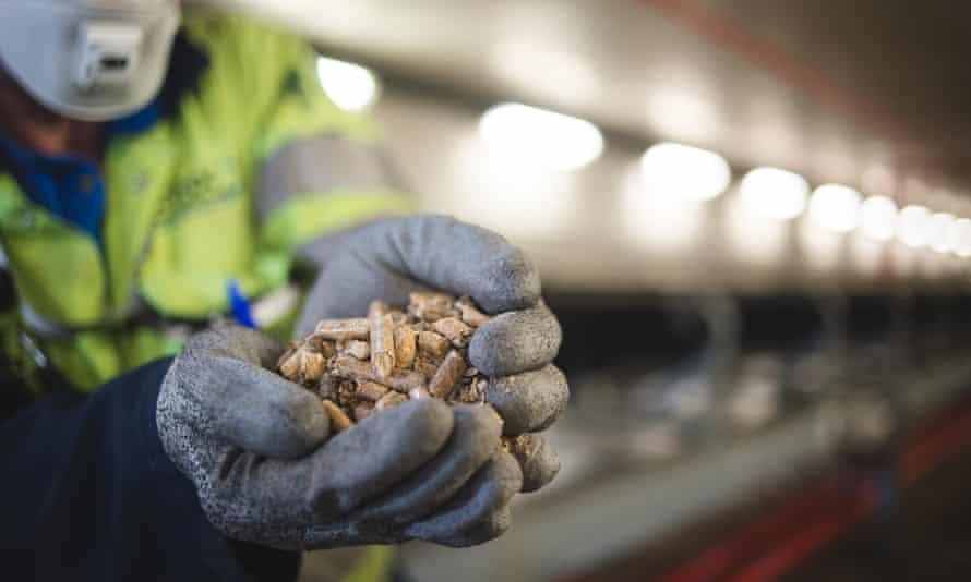 Wood pellets at Drax power station, North Yorkshire