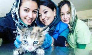 Kabul veterinary surgeons Drs Malalai Haikal, Tahera Rezaei and Maliha Rezayi from Nowzad Conrad Lewis Clinic