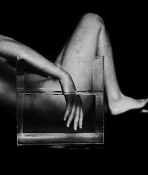 A hand in a glass tank of water