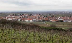 Kallstadt vineyards.