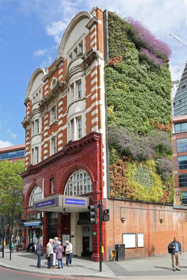 The stunning vertical garden on south London's Elephant & Castle underground station.