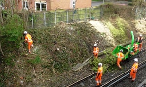 Trees being cleared from the trackside by Network Rail.