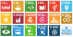 The SDGs have inherently transformed the relationship between business and government by marrying economic growth and social gain.