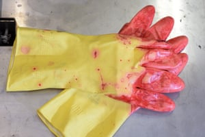 The work can be messy … rubber gloves