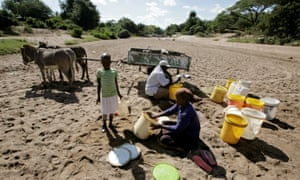 Villagers attempt to collect water from a dry river bed in drought-hit Masvingo, Zimbabwe on 2 June 2016.