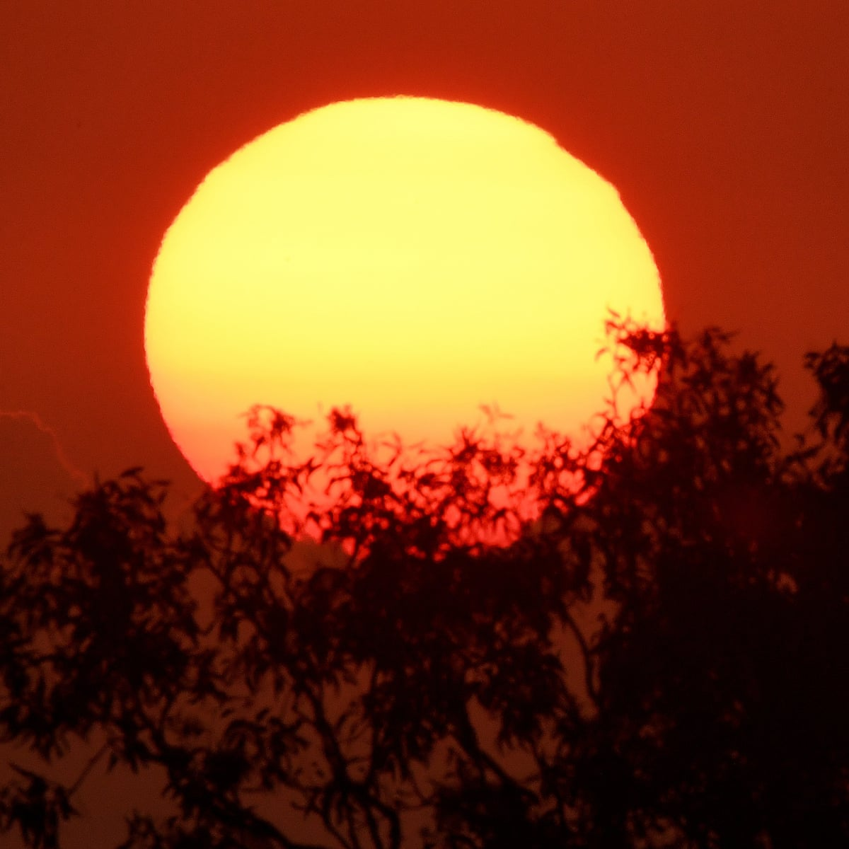 Potentially Fatal Bouts Of Heat And Humidity On The Rise Study Finds Environment The Guardian
