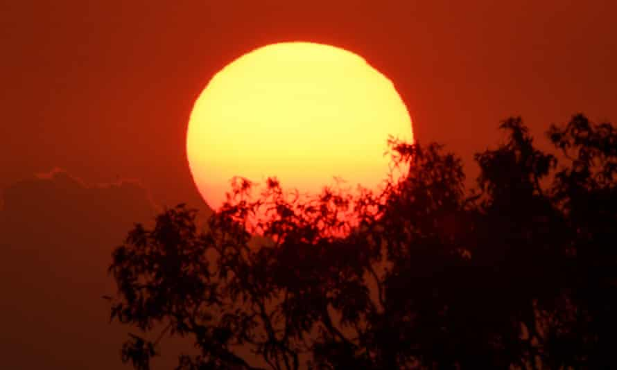 NSW has been placed under a total fire ban from midnight Tuesday to midnight Saturday as Australia is hit by a heatwave that will see temperatures nudge 50C in some areas and 45C in western Sydney.
