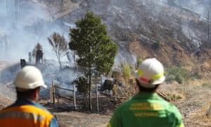 Firefighters work to extinguish a bushfire near Yiinnar in Gippsland, Victoria.
