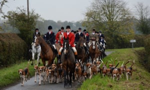Police numbers to help combat fox hunting, hare coursing and other wildlife crimes would be increased under a Labour government, the party has said.
