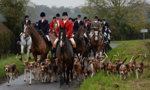 Huntsmen and hounds of the York and Ainsty South Hunt in 2013