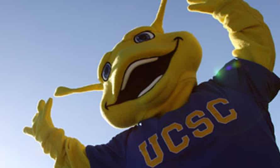 Banana slug mascot of the University of California, Santa Cruz