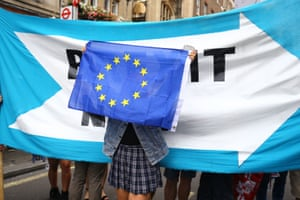 A protester hold up an EU flag in front of a Brexit now banner