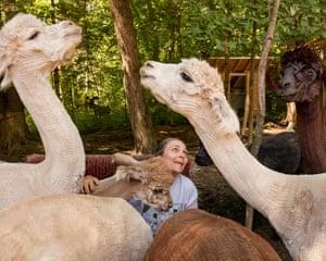 Janice with alpacas, Attleboro, MA, 2016