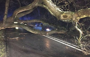 Brockenhurst fire brigade were called to a car that crashed into a fallen tree in the New Forest, Hampshire