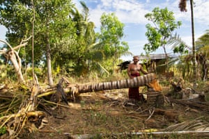 A coconut tree farmer in Kataragama