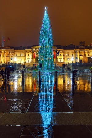 The tree in Trafalgar Square, London was reflected on the rainy pavement