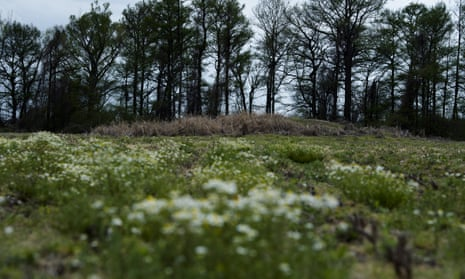 A mound in a field in Wabash, Arkansas that is believed by some to be a mass grave of victims of the 1919 massacre in Elaine.