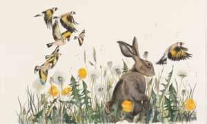A hare and goldfinches.