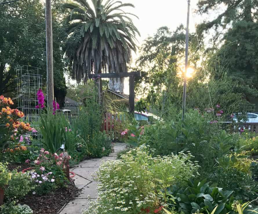A pathway through Gigi Pravda's huge California front garden