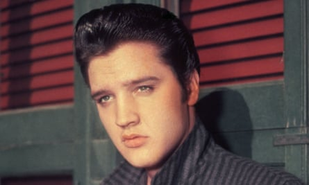 'Great ducktail plume and lopsided grin' … Cohn's Awopbopaloobop Alopbamboom is full of praise for Elvis.