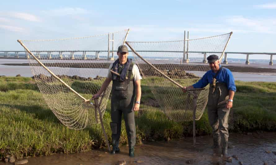 Lave fishermen in the Severn estuary in Wales.