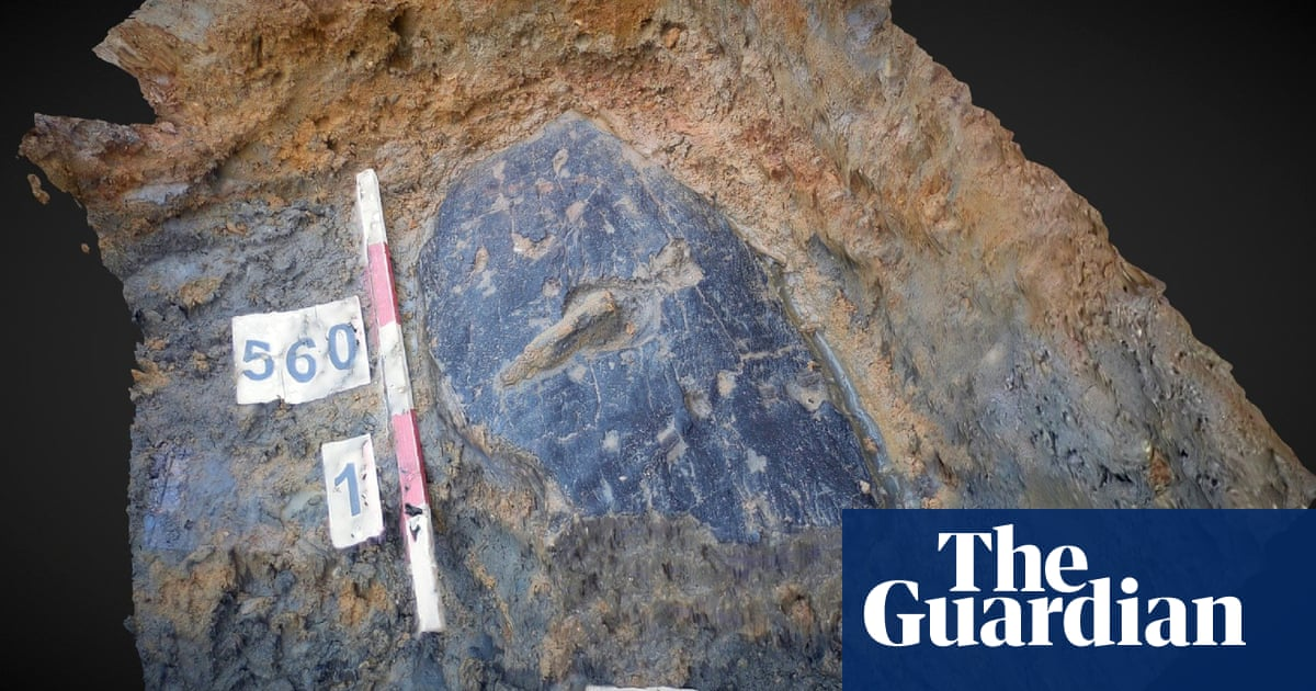 'Phenomenal' 2,300-year-old bark shield found in Leicestershire
