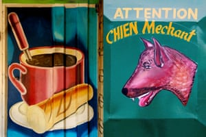 Food and dog paintings